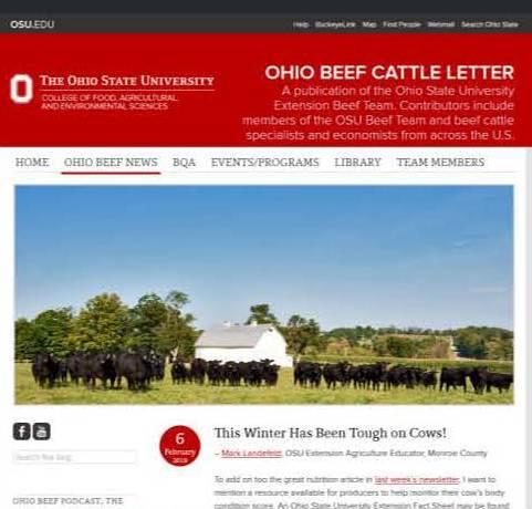Beef Newsletter