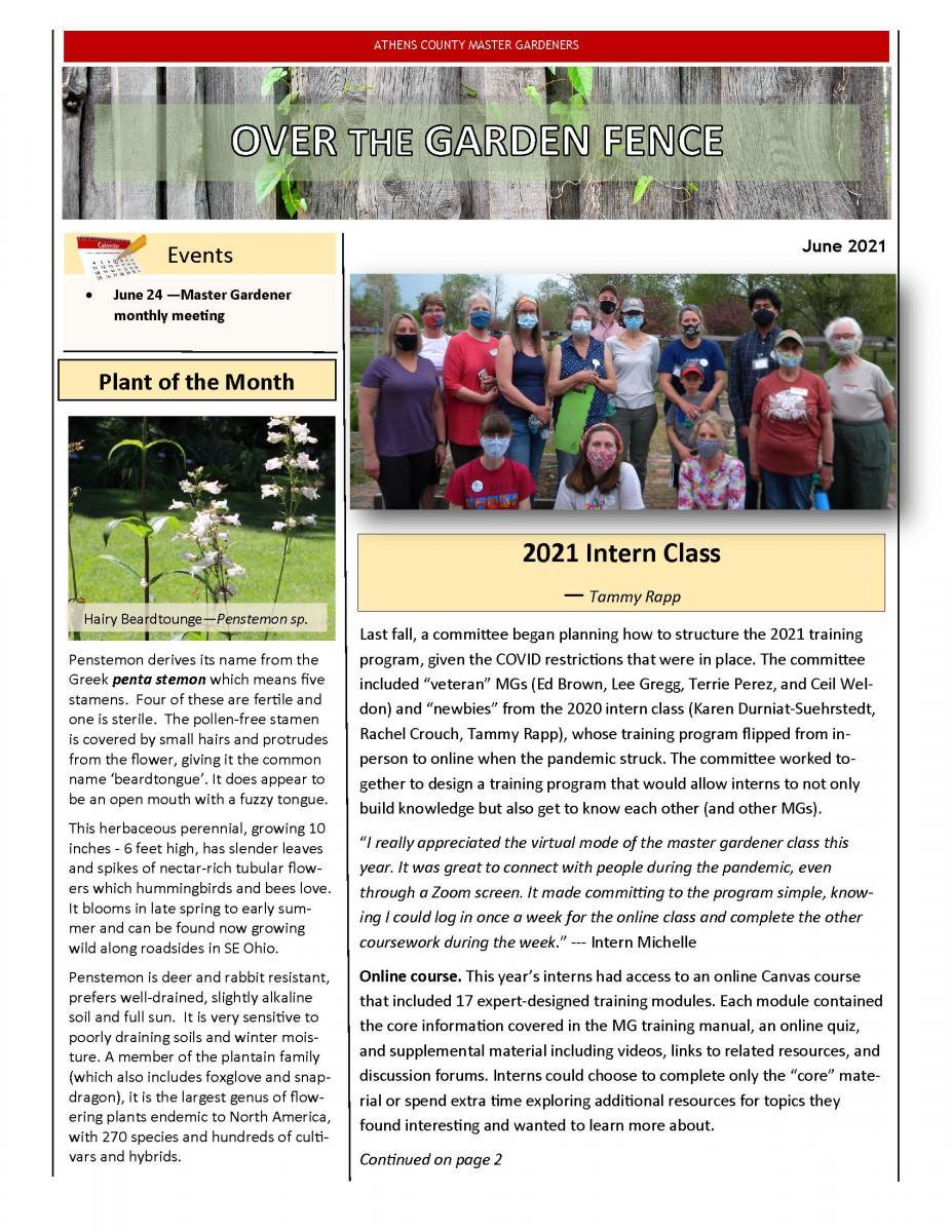 June 2021 MG Newsletter