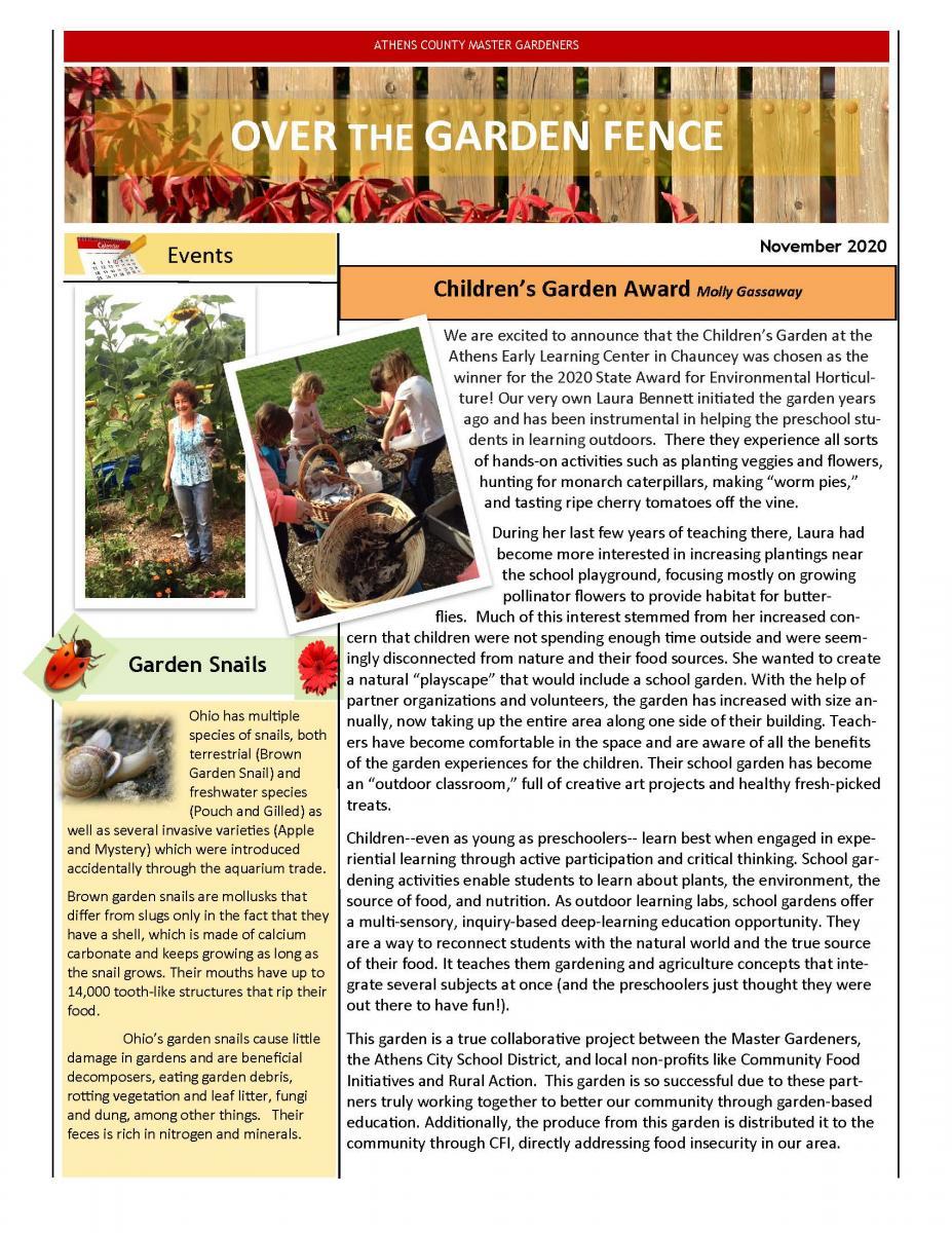 November 2020 MG Newsletter