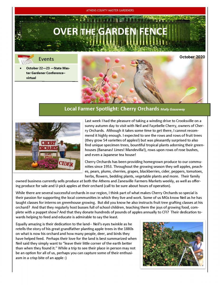 October 2020 MG Newsletter